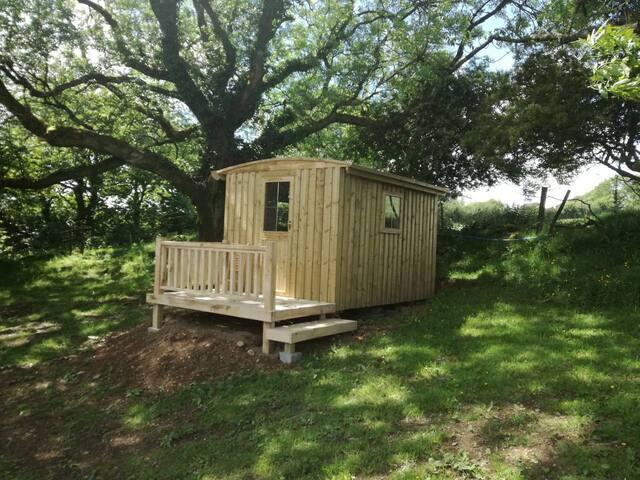 Summerton Shepherds hut set in 20 acres of woods