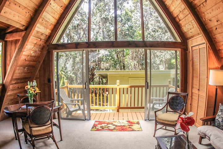 Charming A-frame Rainforest Cabin with Jacuzzi