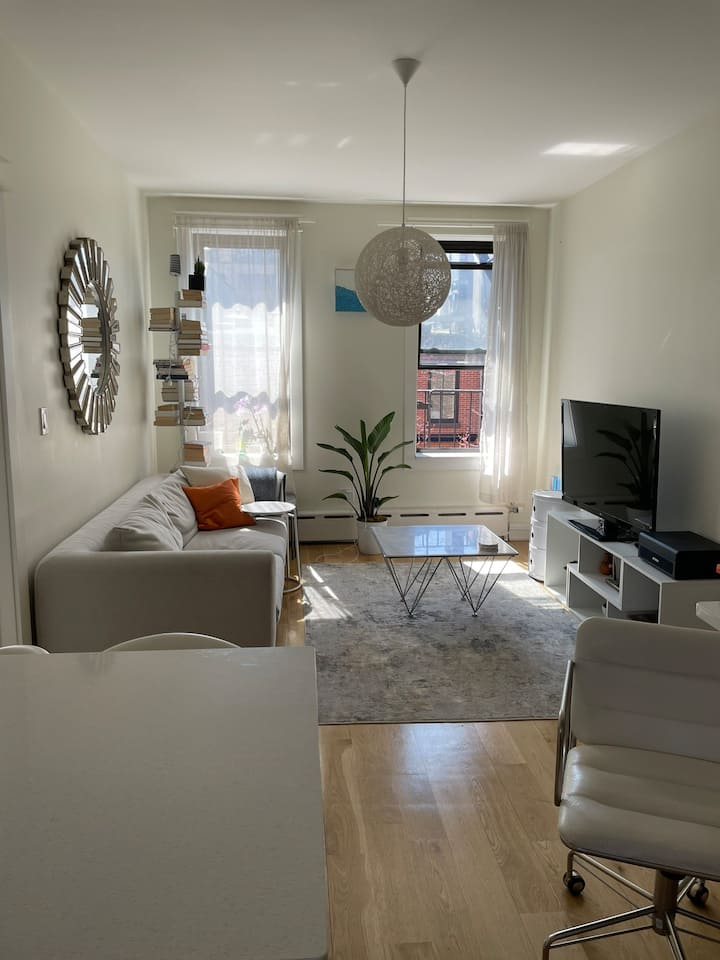 Beautiful bright one-bedroom apartment in Chelsea