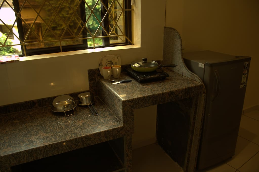 Kitchenette with fridge and other amenities