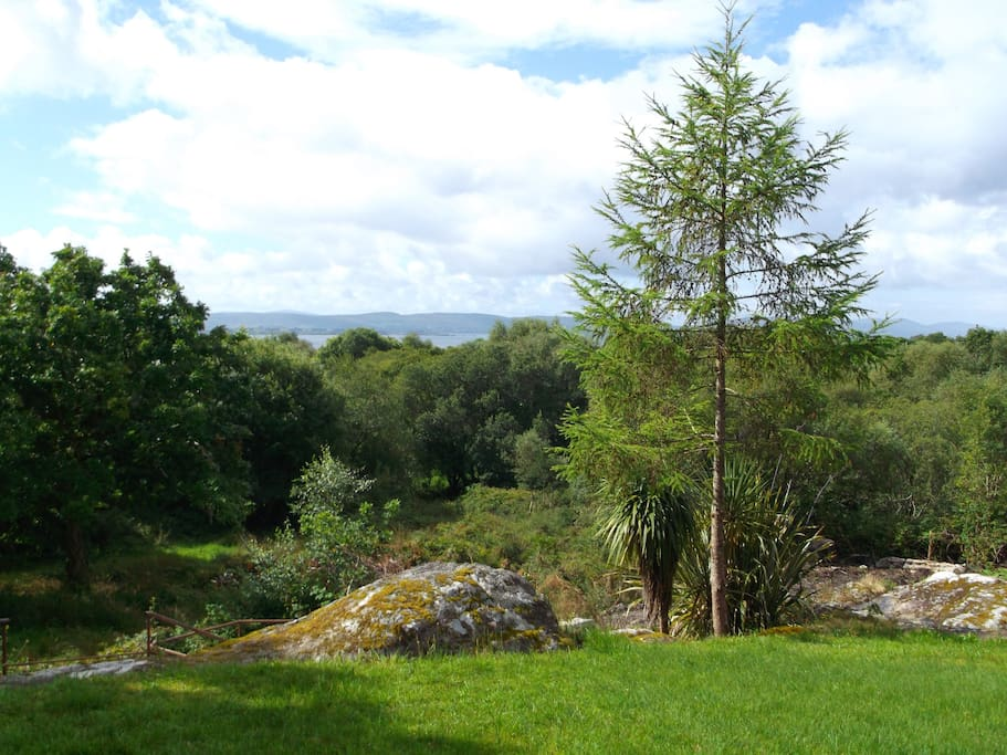 View over garden and Bantry Bay