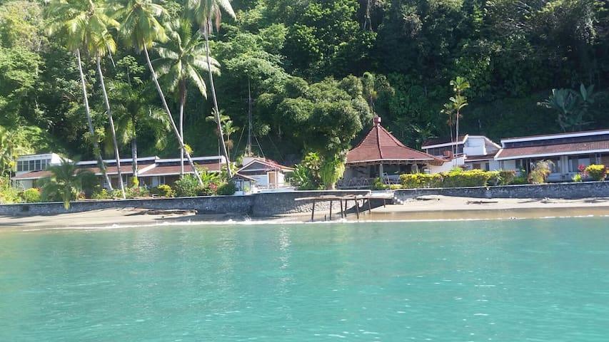 Beachfront Eco Lodge - Golfito - Bed & Breakfast
