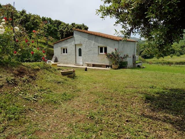 Charmante maison proche d' Ajaccio