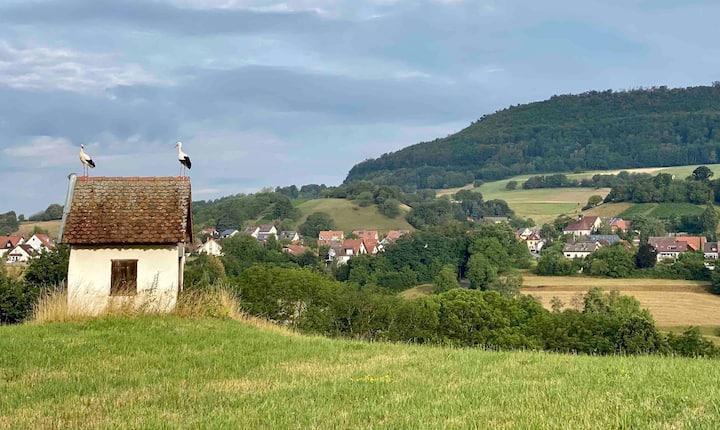 Landgut Stöckenhof, Urlaub stadtnah in der Natur