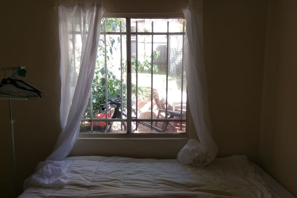 Window and bed