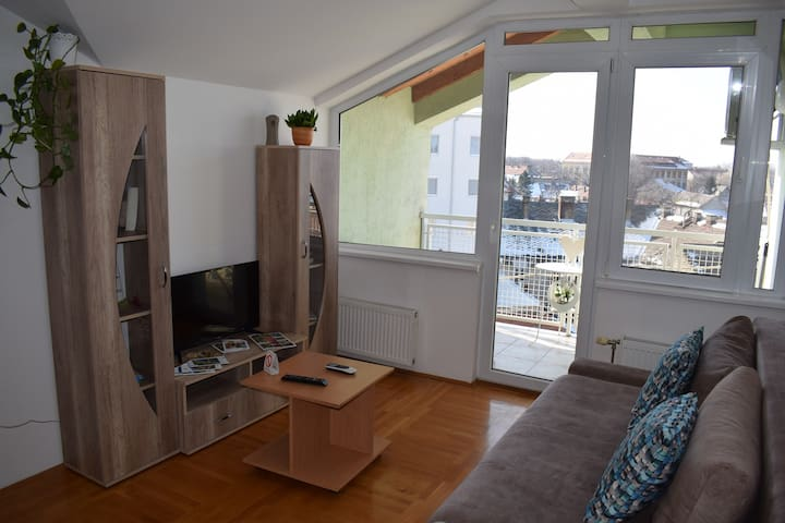 Apartment in Subotica City Center