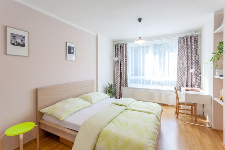 Apartment Havlíčkovy sady - Prague