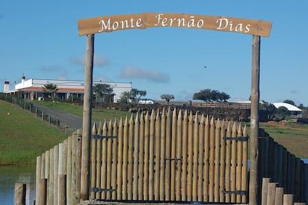 Monte Fernão Dias - Almodôvar