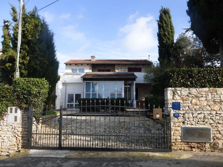 Vila Regi