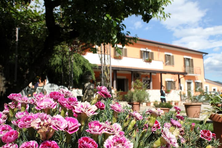 B&B Casale Shanti - Piedimonte San Germano