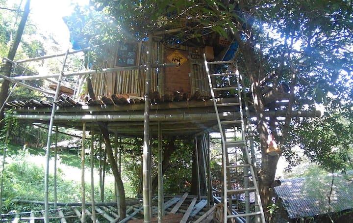 地上8m、竹で作ったツリーハウス (Bamboo Tree House)