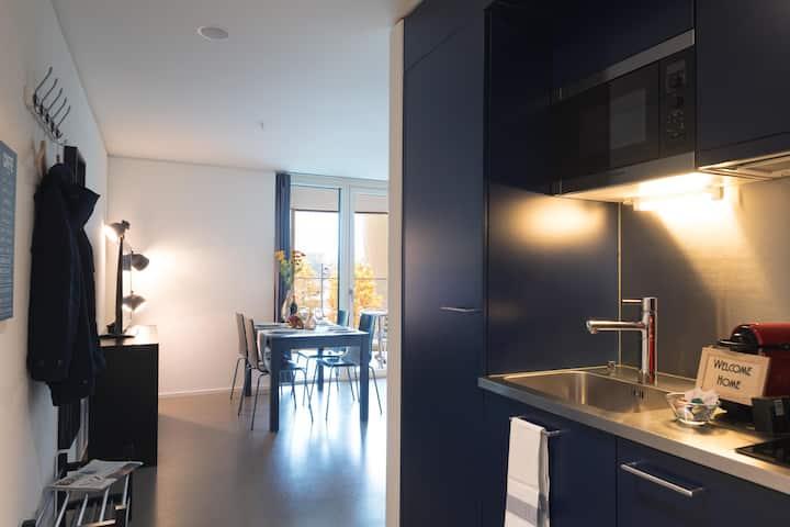 Bright 2.5 room Apartment Pilatus III