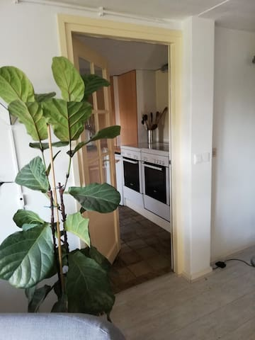 Vanuit de entree/woon/eet gedeelte bereik je de keuken. Waar ook een doorgaan is naar de tuin.