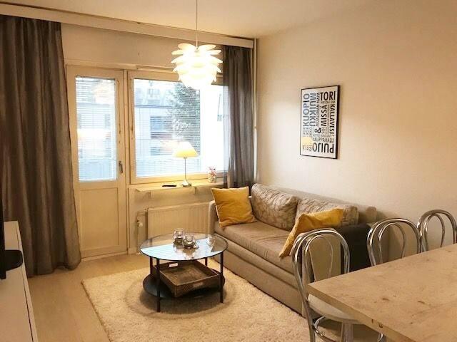 Comfy city apartment