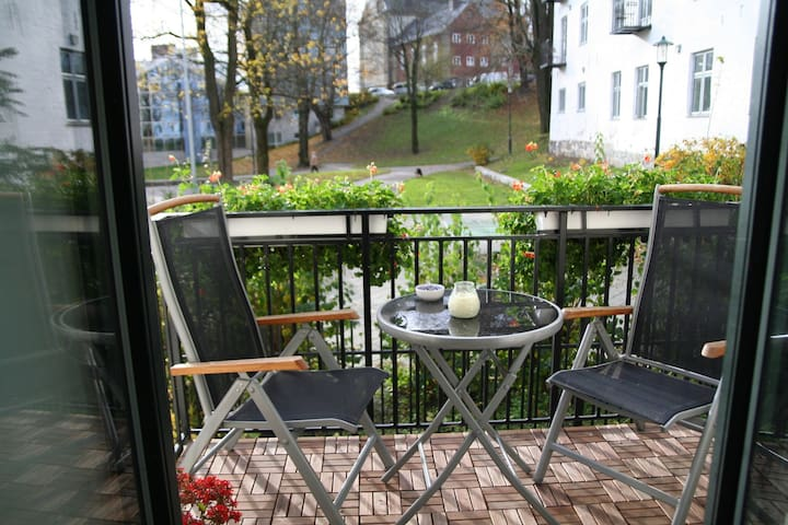 Nydelig leilighet midt i sentrum - Oslo - Appartement