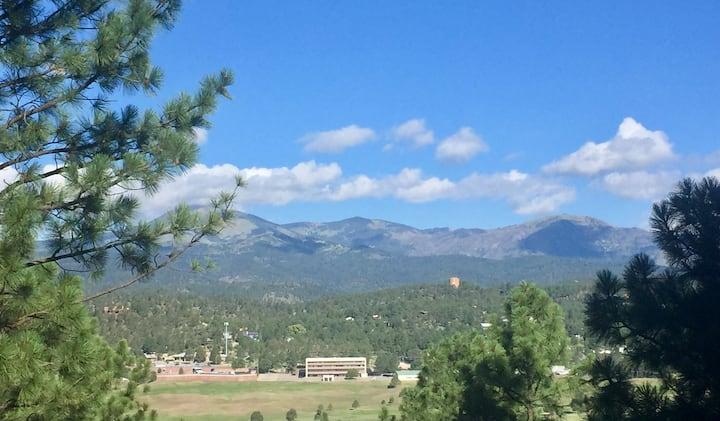 Million Dollar View - Mountain Cabin