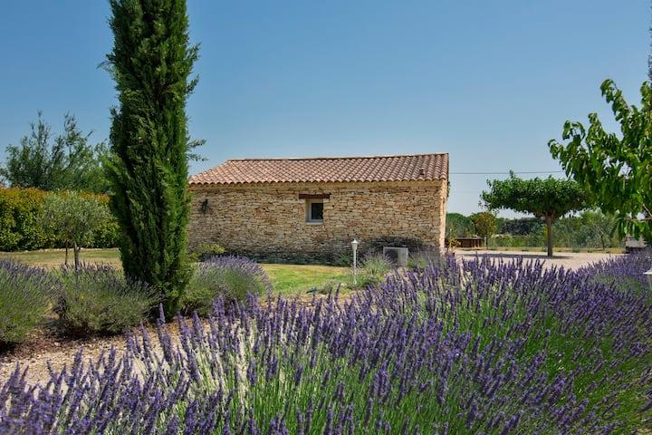 Mazet Provençal jacuzzi et piscine privatif