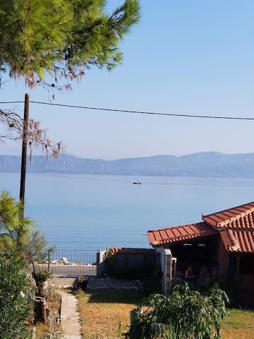 Korinthian Breeze