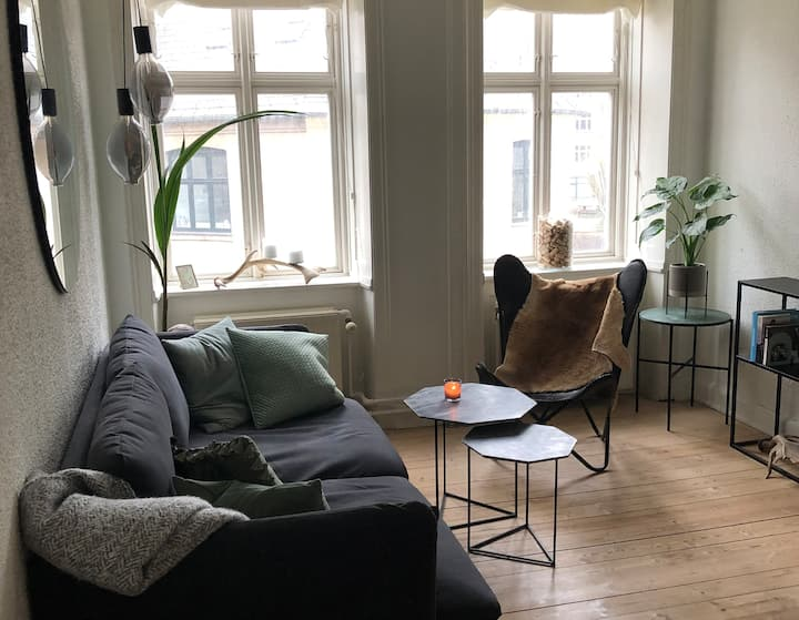 Cosy apartment in the heart of CPH, Vesterbro.