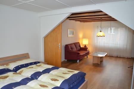 Convenient 2-room apartment next to Basel (854) - Birsfelden - Huoneisto