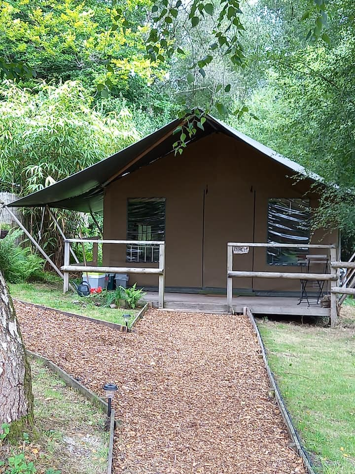 Safari Tent 'Birch' with great facilities