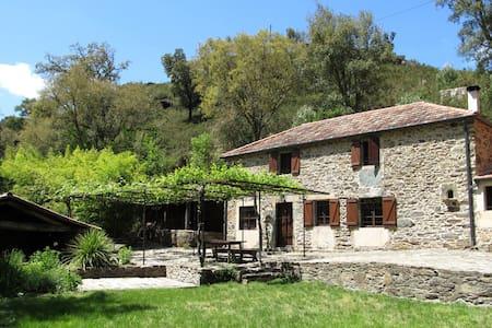 El Molino de la Balsiña - Vila de Cruces - Casa