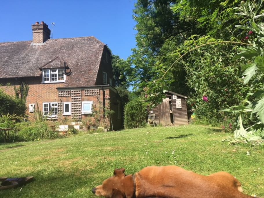 the English country garden perfect for lazy days