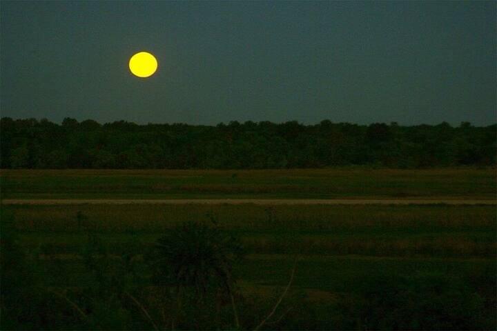 Vista a la barranca desde la galería . Y desde ahí cada amanecer y la salida de la luna.