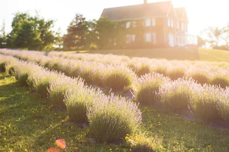 Lavender Farm Loft, minutes from Creemore
