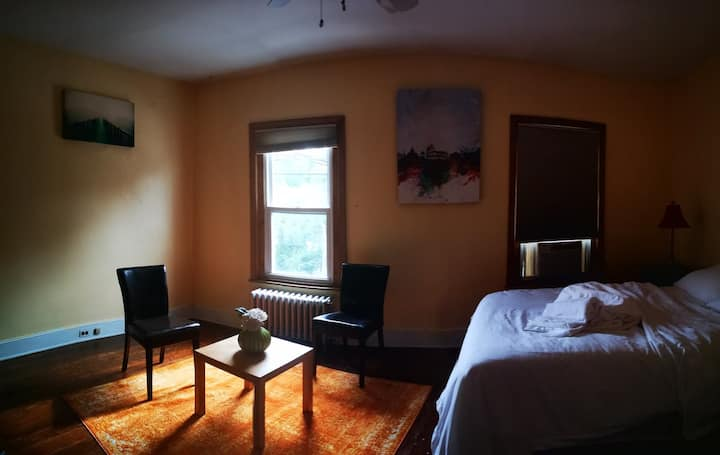 Private bedroom with high-speed wifi in Manayunk