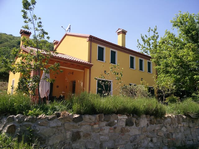 Bed and Breakfast, Agriturismo. - Battaglia Terme