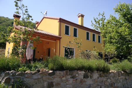 Bed and Breakfast, Agriturismo. - Battaglia Terme - Bed & Breakfast