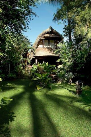 Gelebeg Baru, a cozy Bali house at Lovina Beach