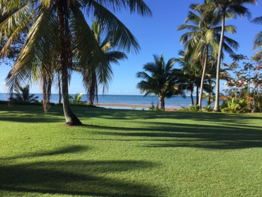 Front lawn to beach