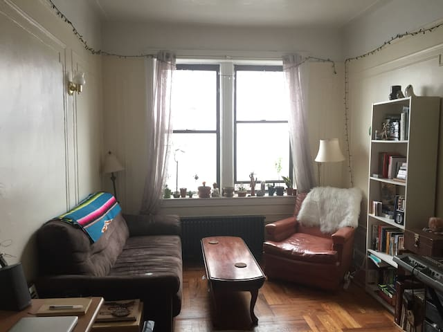 Artist friendly: entire apt near Prospect Park