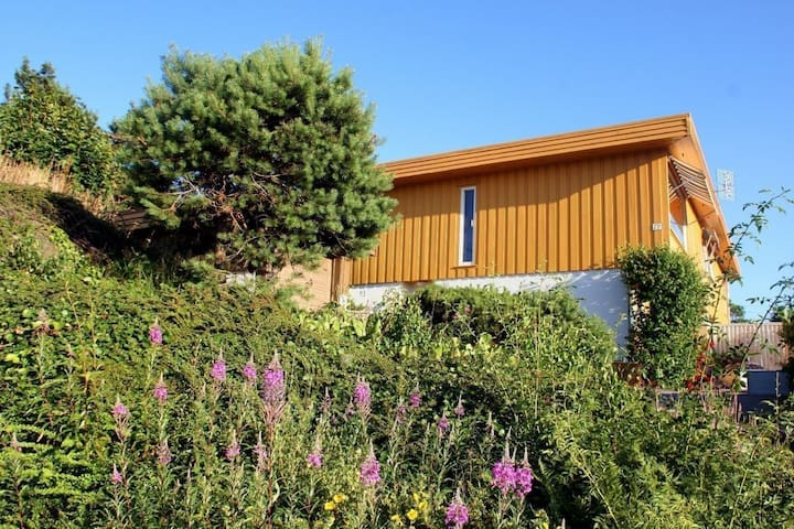 Vhiletoppen - Kristiansand - Hus