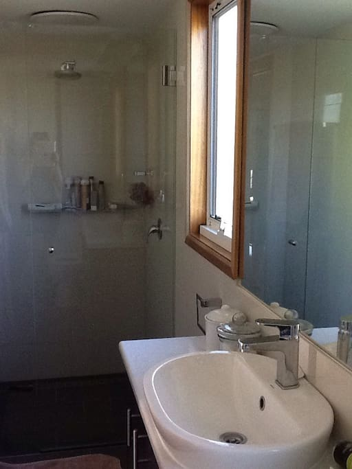 Contemporary renovated ensuite, with modern provisions.