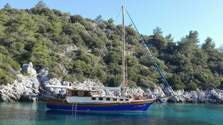 Blue Cruise Bodrum Turkey With Gulet Boat Charter