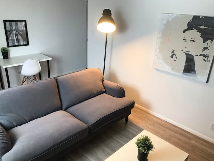 Newly Updated 1 BD/1 BTH Close to HSC (s.2)