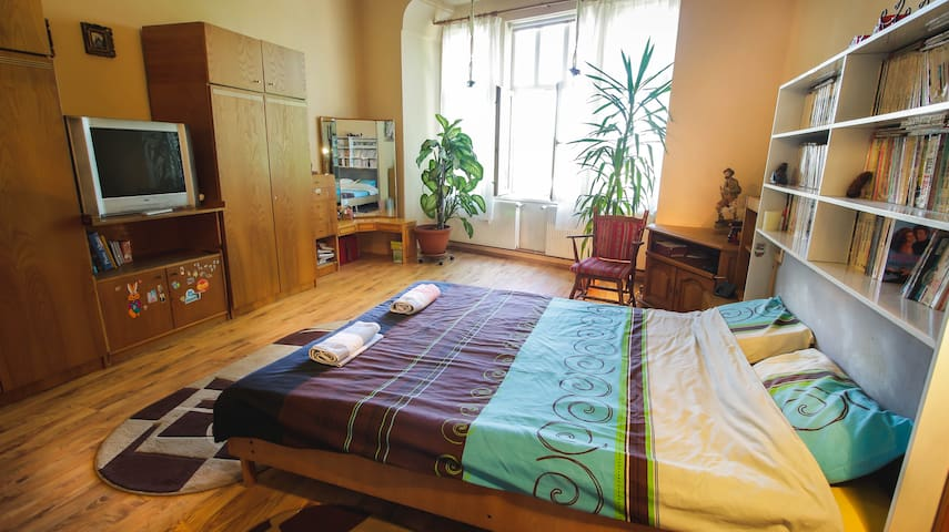 Huge Comfortable Fully Equipped HOME in Old Town