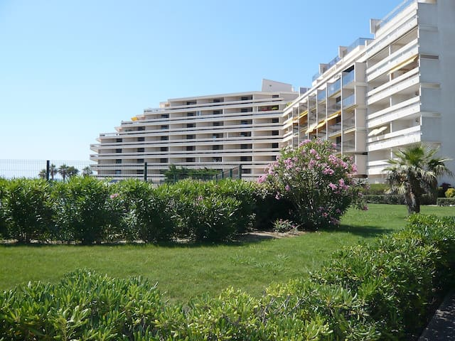 3-room apartment 48 m² Grand Sud in Canet-Plage - Canet-Plage - Apartament