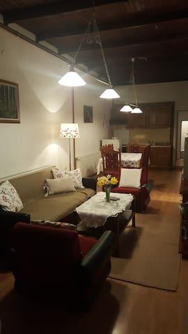 Cosy, rustic, family apartment - Sokobanja - Daire