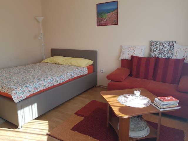 Karlovac Room for 2