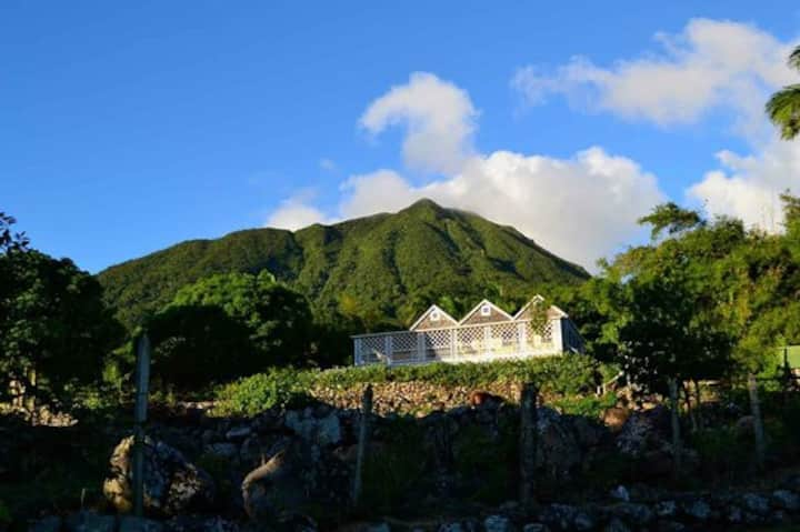 Traditional Nevis Great House