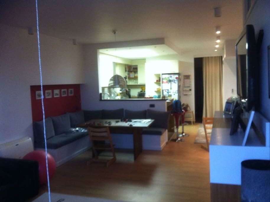 Living room and open kitchen