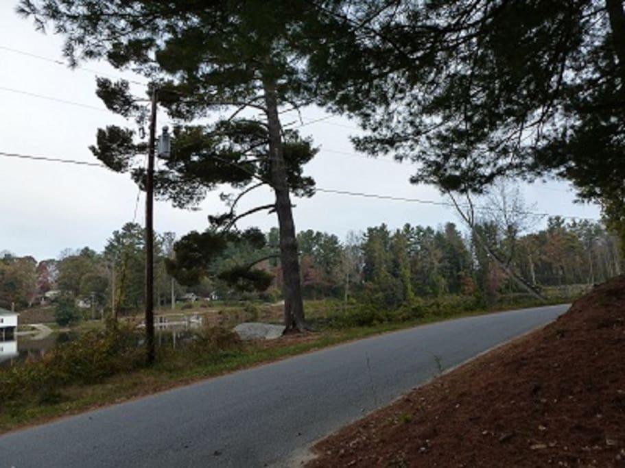 Quiet road to walk