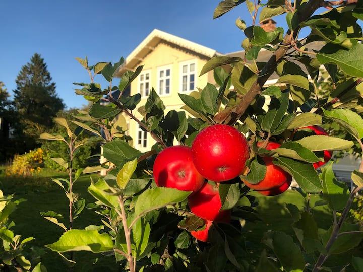 Trondheim Leilighet i idyllisk sveitservilla