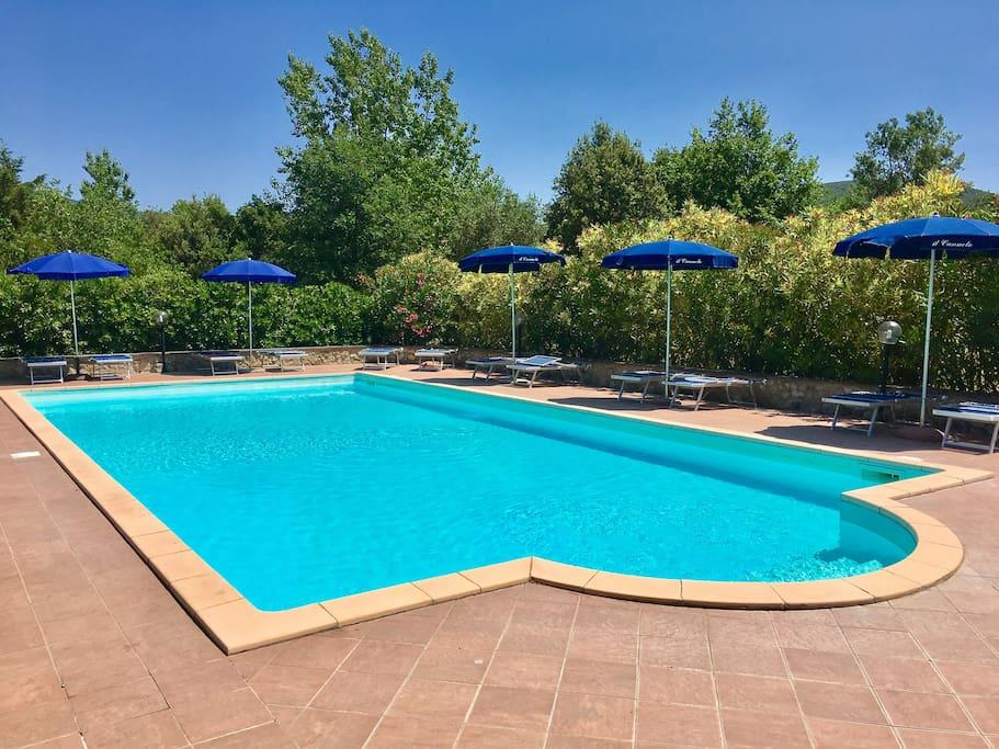 pool and solarium zone