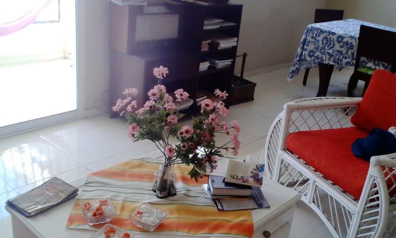 wonderful apartment in Santiago