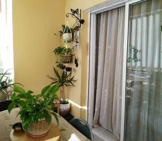 Single room in 3 room's house. - Arona Tenerife - Apartament